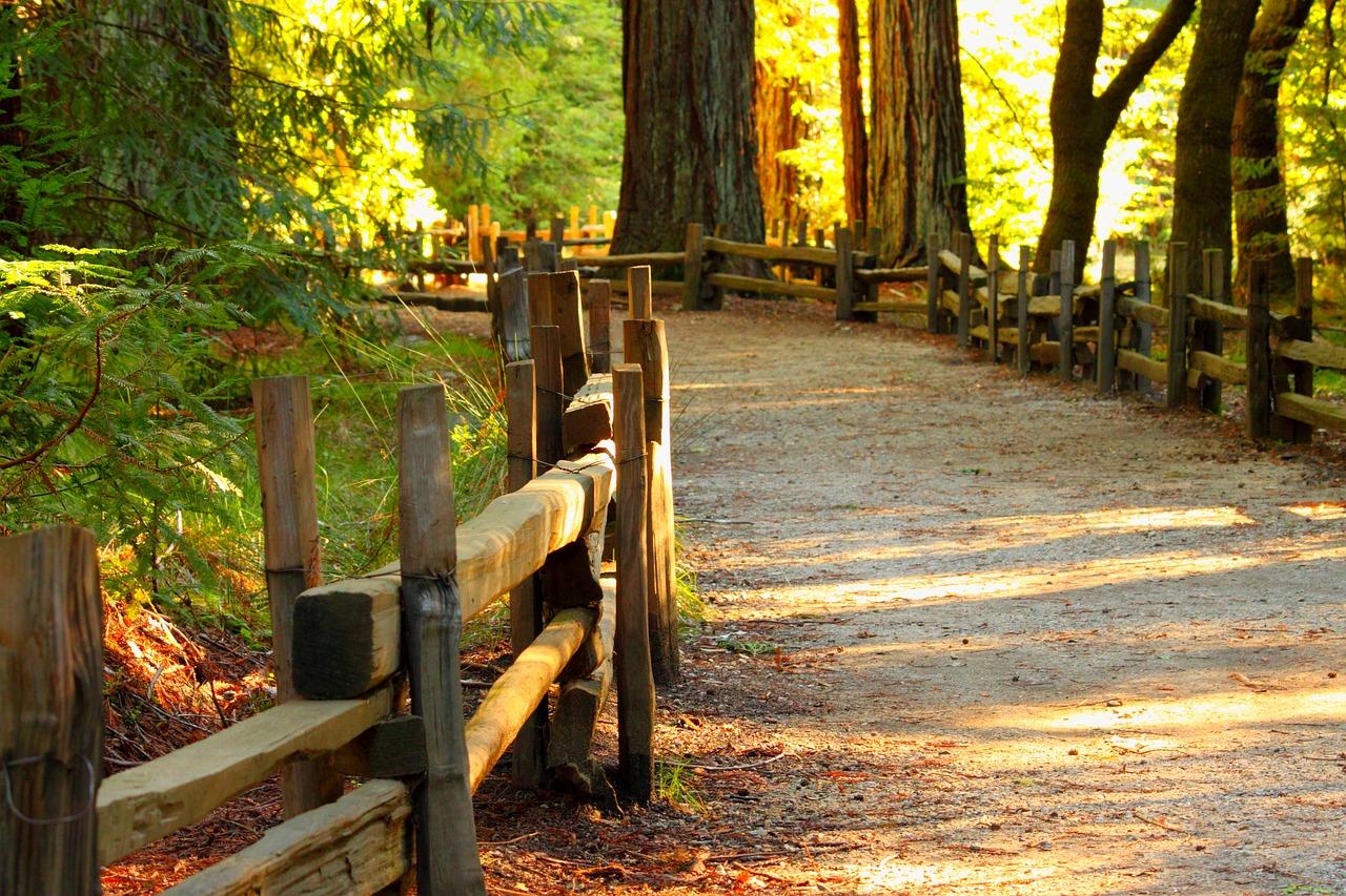 hiking at rock creek park