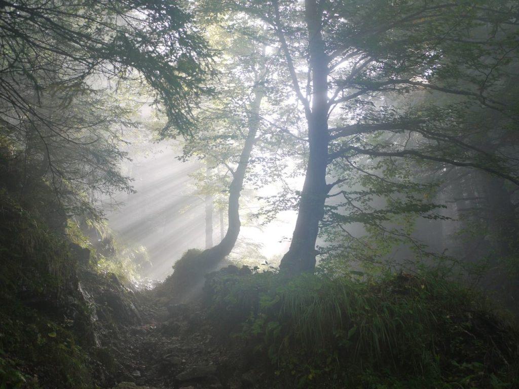 beautiful natural scenery